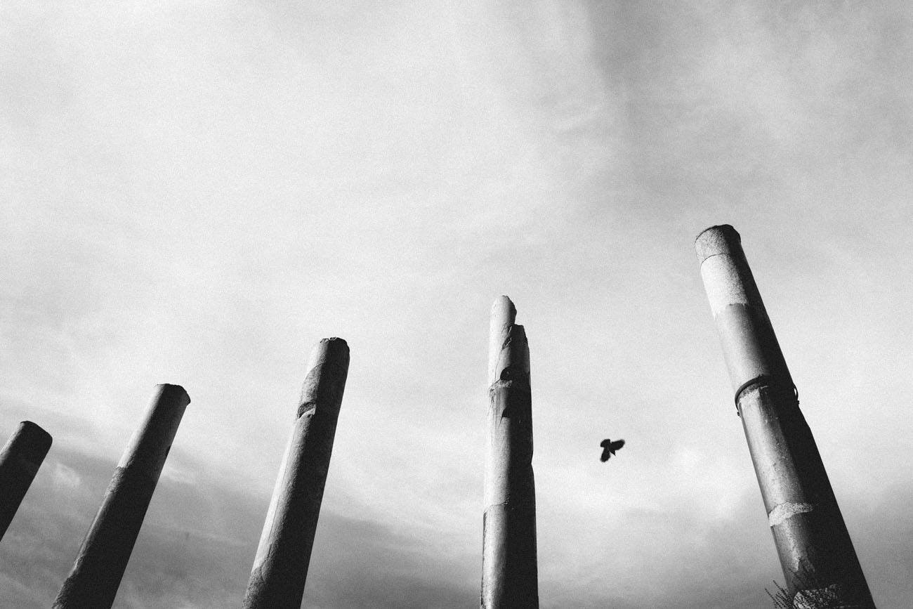 marco fasoli, fotografia analogica, giovani fotografi