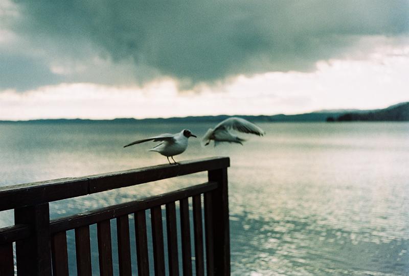 pietro girardi, giovani fotografi, fotografia analogica